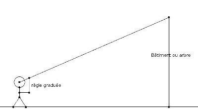 Mesure du gymnase en 4ème avec le théorème de Thalès